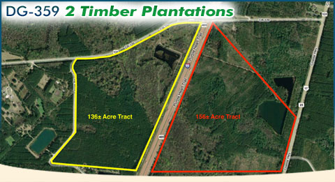 DG-359 2 Timber Plantations