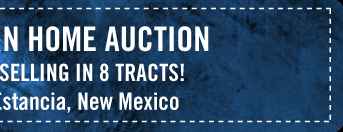 Amazing Mountain Home Auction - Near Albuquerque Selling in 8 Tracts!