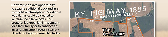 Multi-Tract Kentucky Cropland Auction
