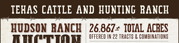 Texas Cattle and Hunting Ranch Auction