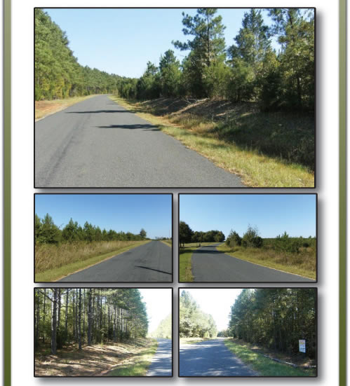 687+/- Acres - Offered in 3 Tracts - SC