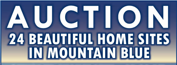 24 Beautiful Home Sites - Mountain Blue - NC