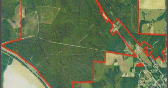 1270 Acres of Timberland in Florida