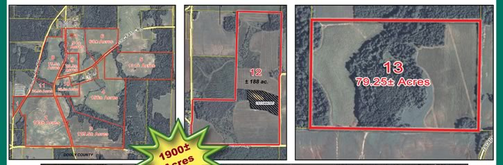 1,900+/- Acres - Farm Land & Equipment - GA