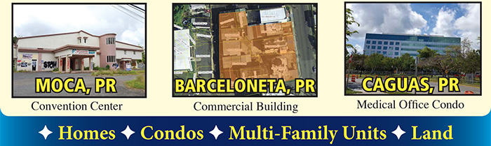 Puerto Rico Real Estate Auction