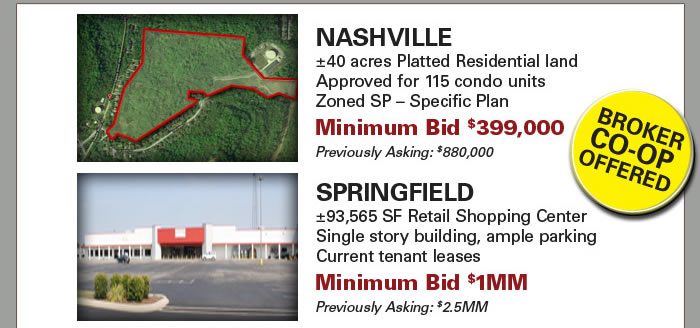 Bank-owned Tenn. Retail Center and Finished Lots