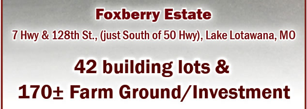 42 Building Lots / 170+/- Farm Ground/Investment in MO